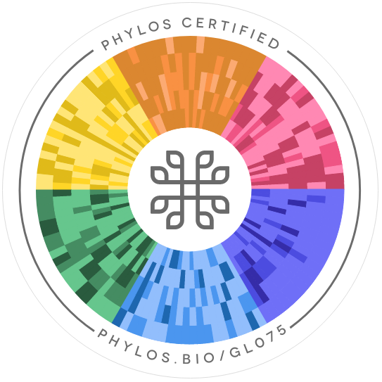P-91 Phylos seal
