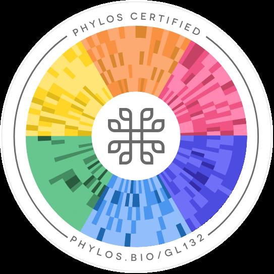Vortex Phylos seal