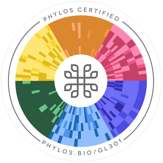 Inner Chi Phylos seal