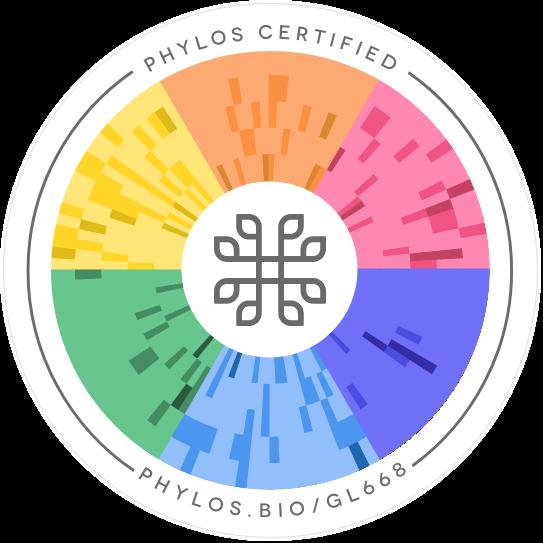 YMCA #3 Phylos seal