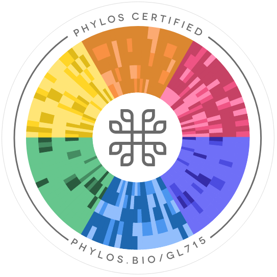 New Caledonia Phylos seal