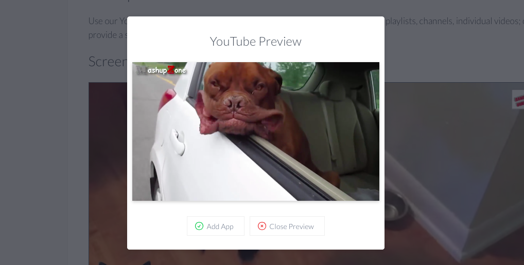 YouTube video preview in ScreenCloud