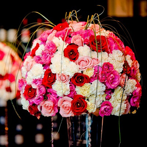 DIY Wedding Pack 400 Rose and 300 Carnations