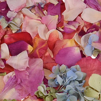 Whimsical Fantasy Assorted Dried Petals