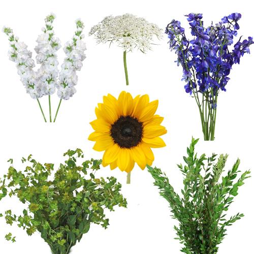 Blooming Garden Spring Combo Pack