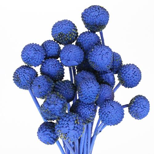 Blue Bulk Billy Balls Wholesale