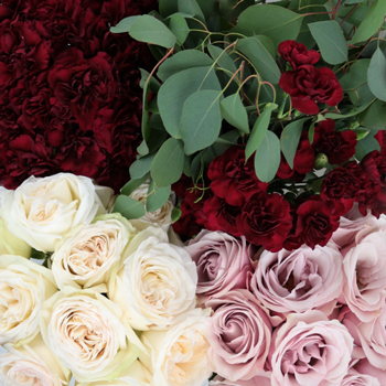 6936f165f8 Burgundy Blush DIY Wedding Flower Pack