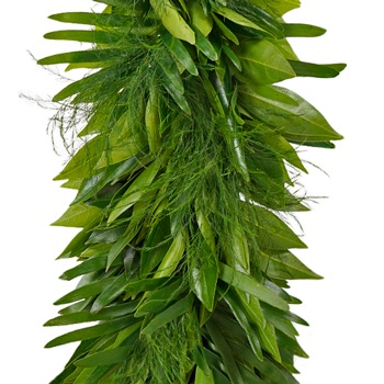 Cocculus, Coontie and Tree Fern Greens Garland