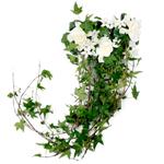 Mini and Standard Callas Wedding Flower Pack DIY
