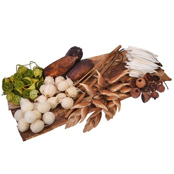 Natural Dried Tropical Pack