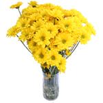 Yellow Factor Novelty Daisy Buy Bulk