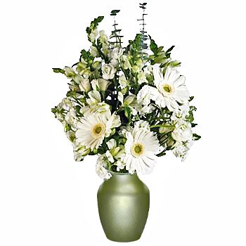Fields of Spring White Online Flower Bouquet