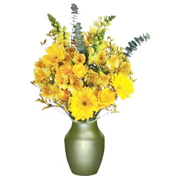Touch of Yellow Online Gift Arrangement
