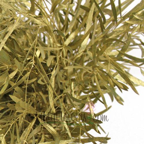 Gold Feather Leaf Filler Greens