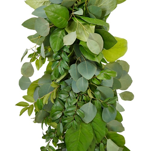 Green Huck, Silver Eucalyptus and Salal Greens Garland
