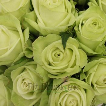Green Tea Bulk Rose