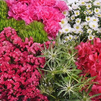 Bright Pink Textured Filler Flower Pack