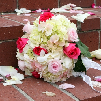 DIY Wedding Pack 100 Roses and 15 to 20 Hydrangeas