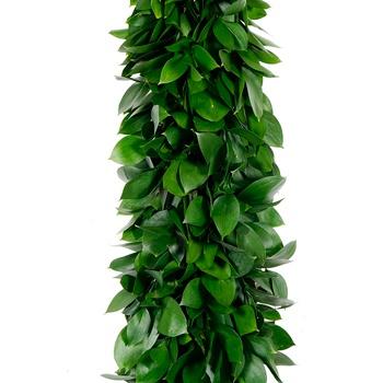 Israeli Ruscus Greens Garland