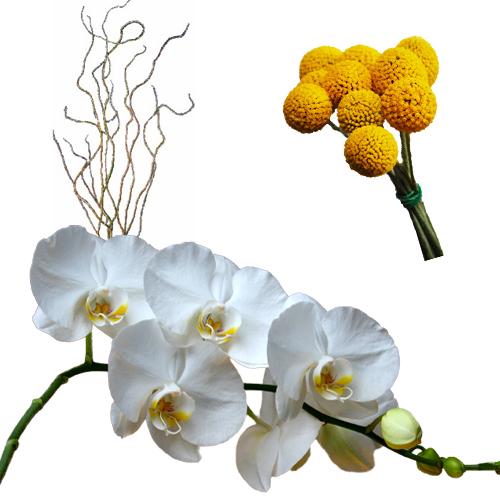 Modern Elegance Wedding Flower Combo