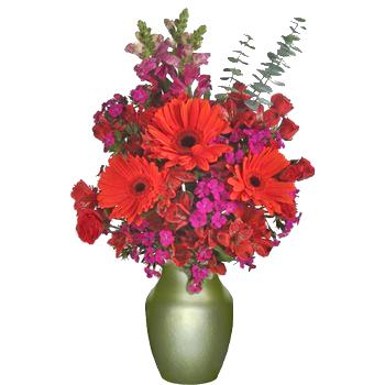 Spring Flowers Red Online Gift Bouquet