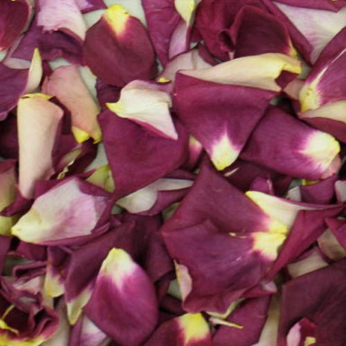 Plum Star Freeze Dried Rose Petals
