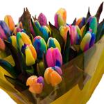 Carnival de Nice Novelty Tulip Flower