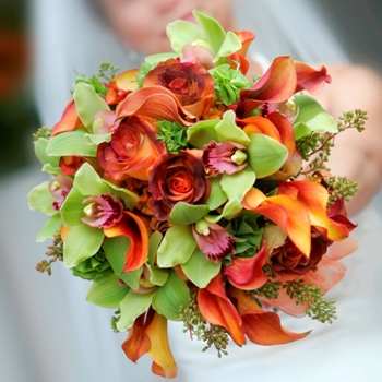 Wedding Flower Pack 50 Roses and Cymbidium Orchids