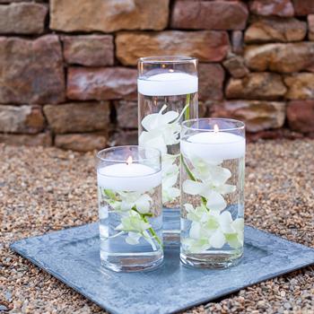 Easy Dendrobium Orchid Centerpieces Trio + Blooms