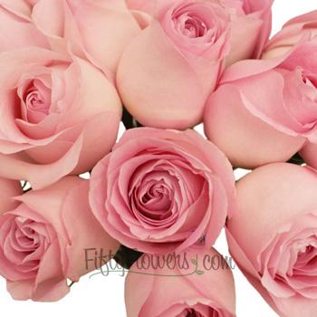 Sweet Akito Light Pink Rose