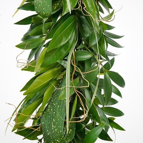 Tropical Surprise Garland