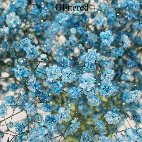 Light Blue Airbrushed Baby's Breath