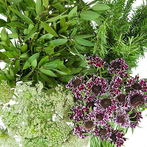 Burgundy Wildflower Filler DIY Pack
