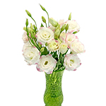 White and Pink Lisianthus Flwoers