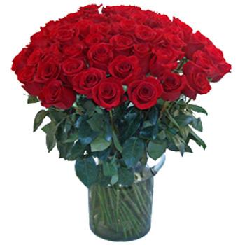 75 Long Stemmed Roses Valentine's Day Gift
