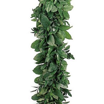 Salal and Ruscus Greens Garland