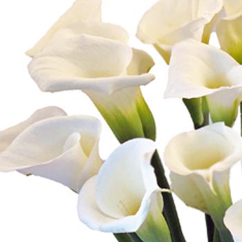 Valentine Calla Lily Flower Arrangement