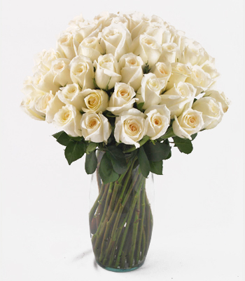 Dozen or More Rose Bouquet
