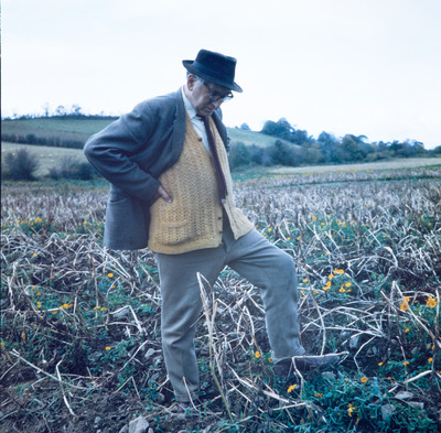 photo, image, old, man, wearing, eyeglasses, black, hat, coat, farm, field, crops, dead, died, plants, flowers, orange