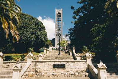 diocese, new zealand, church, cathedral, architecture, steps, landmark, trees, branches, sky