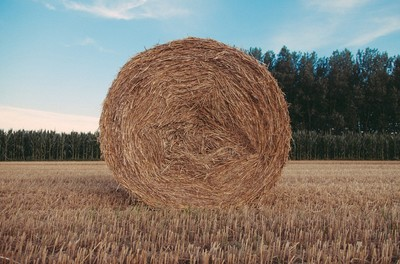 field, rural, countryside, hay, trees, nature, sky, clouds, landscape, land