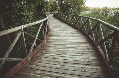 footbridge, wooden, bridge, architecture, people, walk, nature, park, plants, trees, lake, water