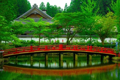 temple, architecture, footbridge, pond, water, reflection, greenery, vegetation, plants