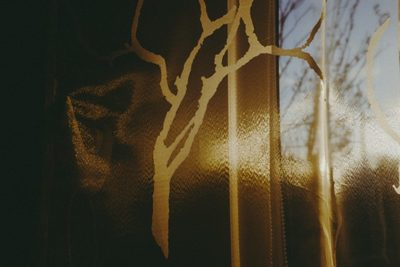 morning, sunlight, curtains, window, branches, reflection, dawn