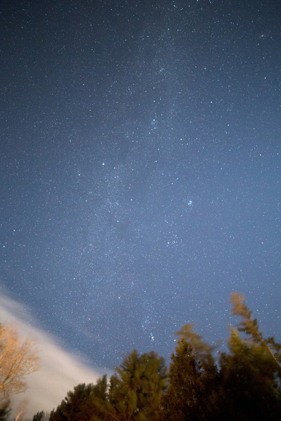 sky, clouds, blue, skies, night, starry, astronomy, trees, nature, forest, stars