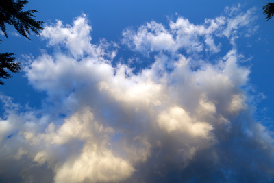 sky, clouds, blue, skies, forecast, meteorology, branches