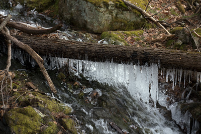 wood, nature, icicle, icicles, moss, environment, winter, rocks, branches, forest