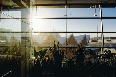airport, waiting, terminal, area, room, travel, architecture, sunlight, windows