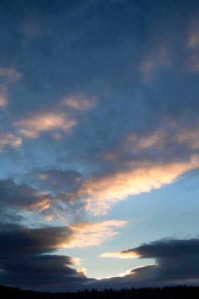 sky, clouds, nature, treetops, sunlight, dusk, sunset, sundown