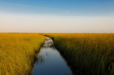river, water, fields, nature, landscape, wind, sky, horizont